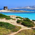 Sardegna: l'antica terra di Amsicora tra feste e informazione locale